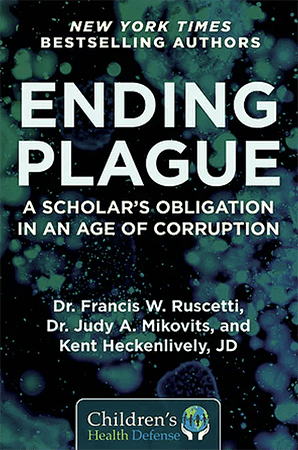 Ending Plague: A Scholar's Obligation in an Age of Corruption